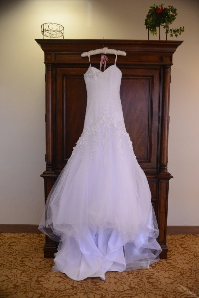 Candace 39 s wedding gown preservation in nevada wedding for Why preserve wedding dress