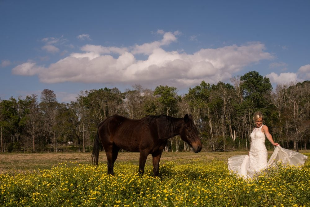 Bride on wedding day in her gown in a field of flowers, with brown horse.